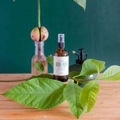 Insecticida ecológico para plantas - Make-up