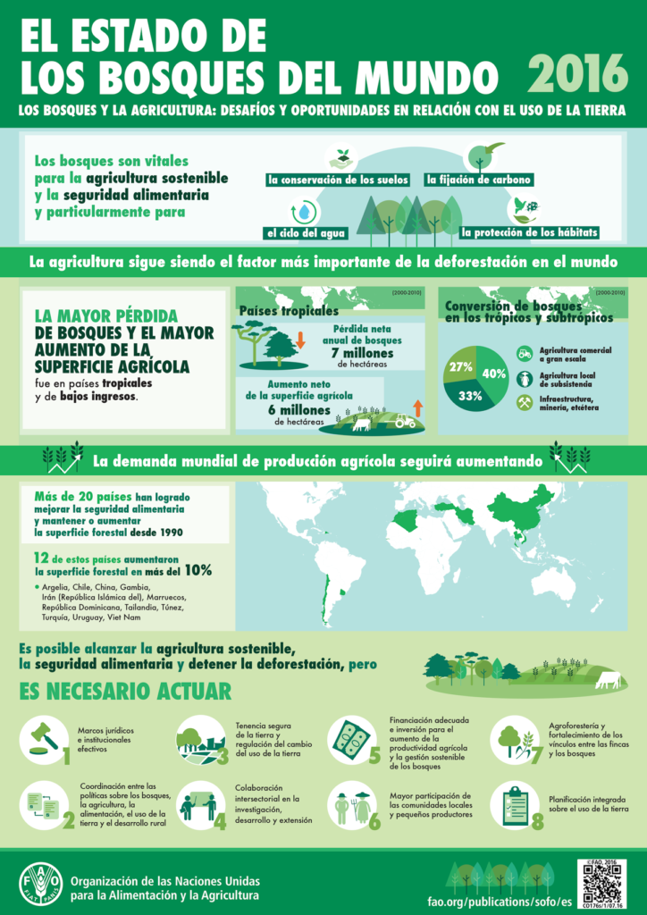 infografia estado mundial de los bosques FAO