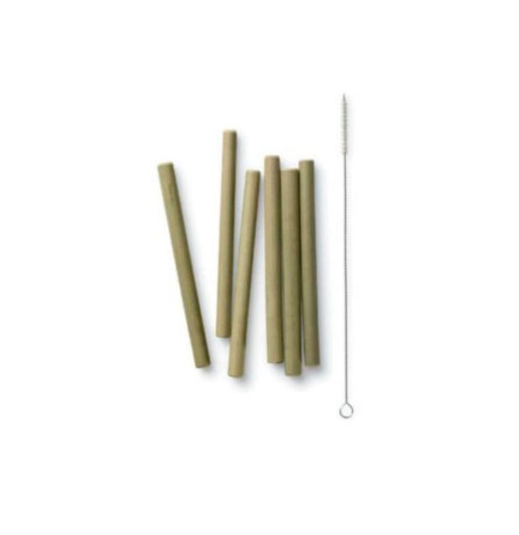 short-bamboo-straws-set-of-6-with-brush-510×510