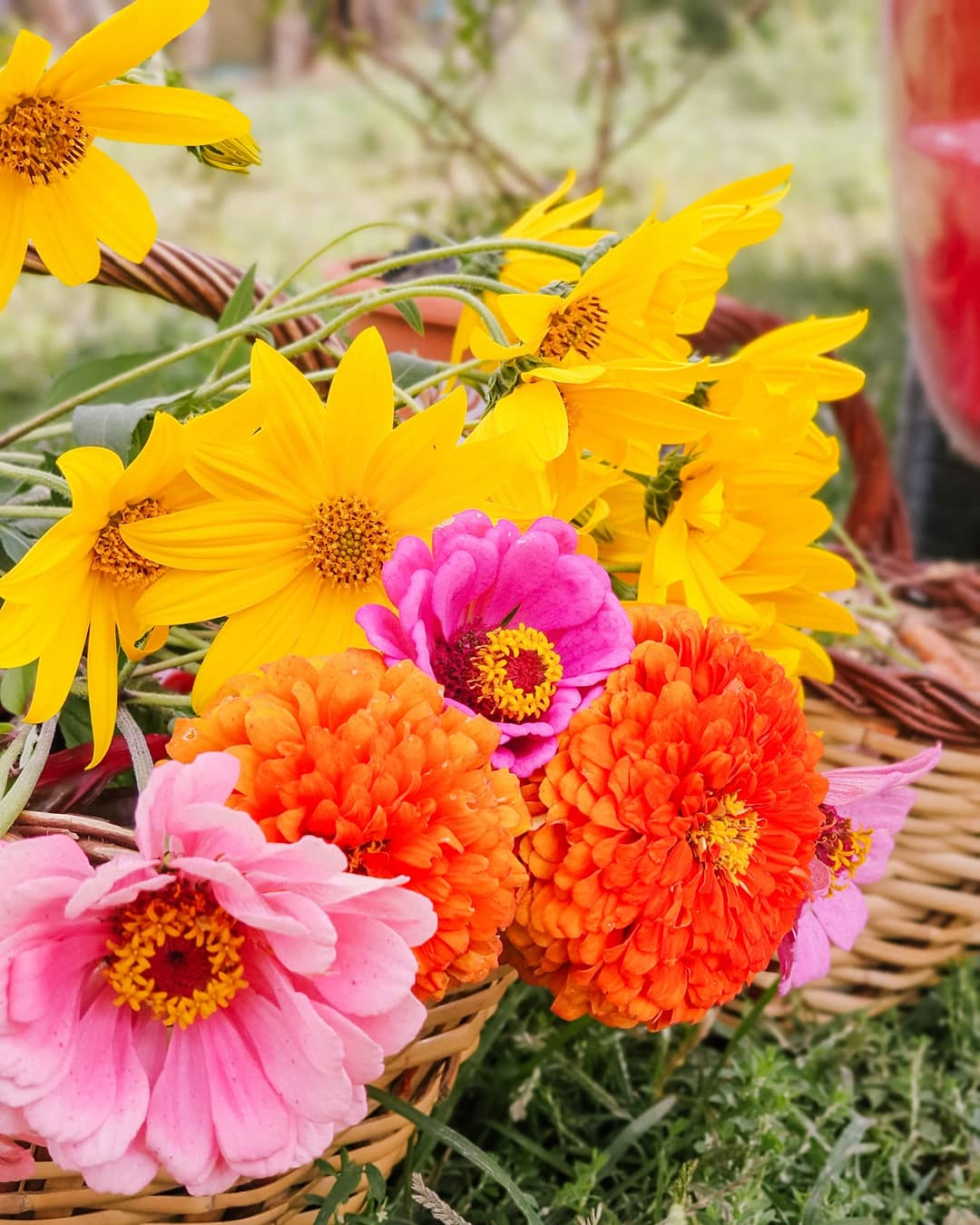 detalle flores de colores ramo