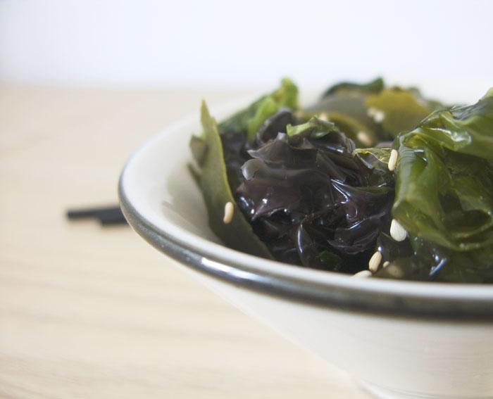 algas ecologia salud propiedades