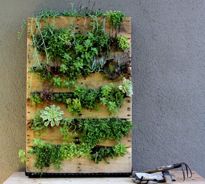 Crear un jardín vertical en un palet